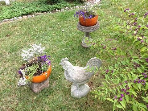 thanks for pumpkin planter idea from sept 17th hometalk, gardening