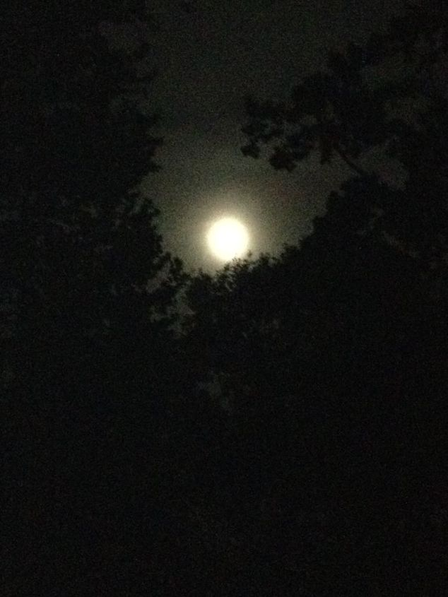 We enjoyed a FULL Harvest Moon this year on the Moonlight Pond Tour in Jackson, Tn.