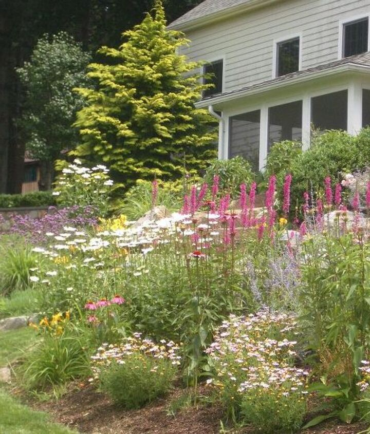 Love the Perennials