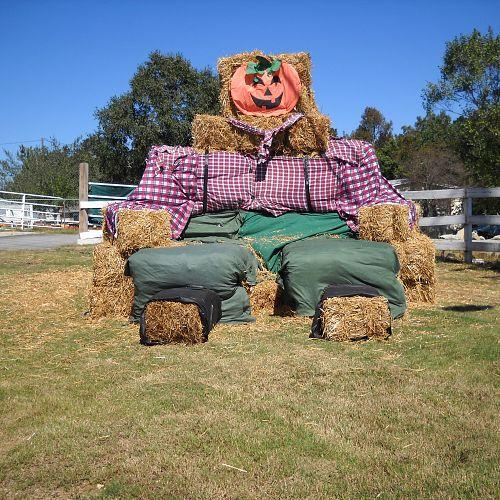 my really big scarecrow, bedroom ideas, outdoor living, seasonal holiday decor