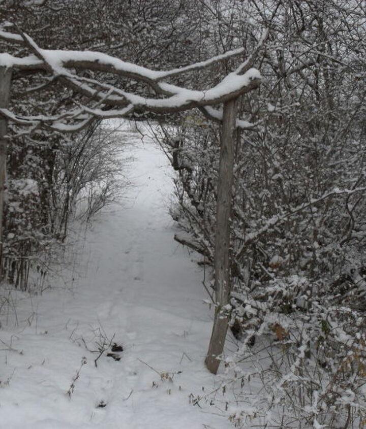 Path to the neighbor.