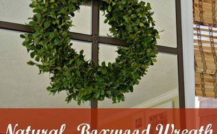 natural boxwood wreath tutorial quick and inexpensive christmas decor, christmas decorations, crafts, seasonal holiday decor, wreaths, Wreath made from boxwood clippings