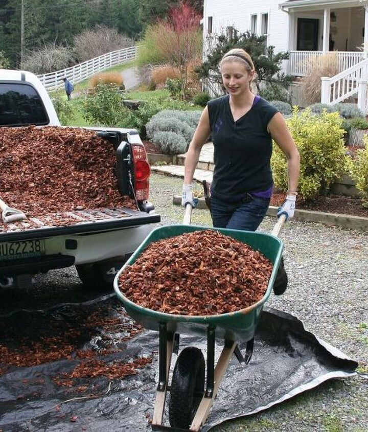 Mulching helps reduce weeds and keeps soil from becoming compacted.