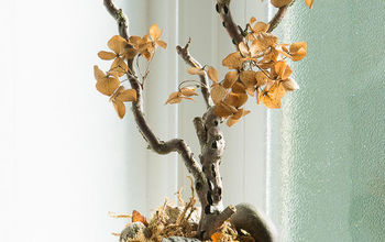 How to Make a Gold Toned Hydrangea Bonsai for Fall- It's a Thing! :)