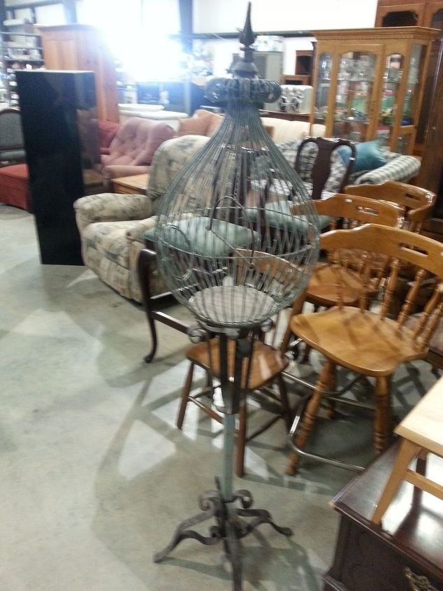 q repurposing thrift store bird cage ideas, gardening, home decor, painting, repurposing upcycling, Looking all lonely at the thrift store begging for a new home
