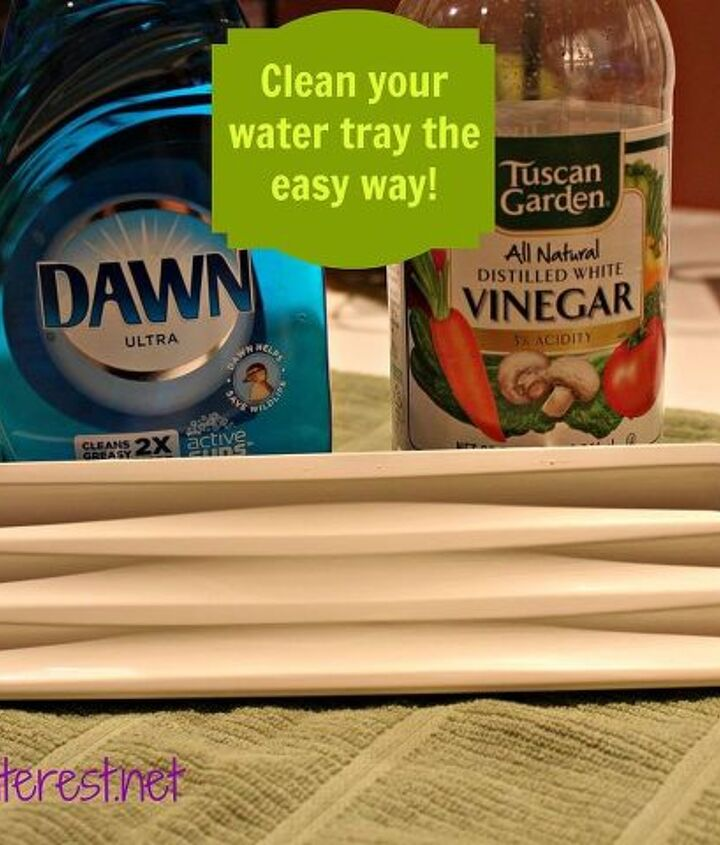 Icky water stains on your refrigerator water tray! Well, tell them goodbye because this simple tip will solve that in minutes!