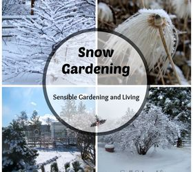 How To Make Your Garden Look Nice During Winter, Gardening, Outdoor Living