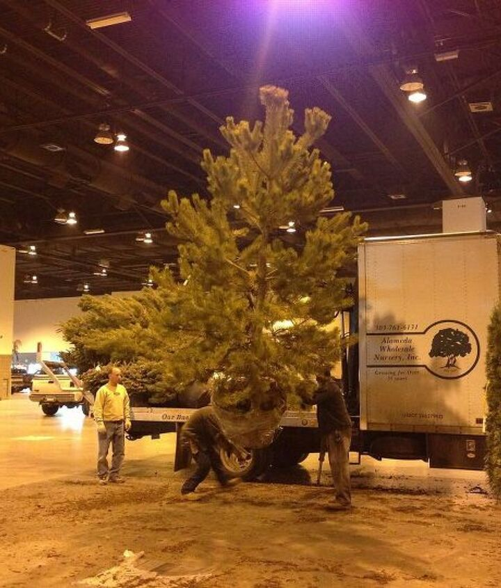 Unloading the trees for our gardens at Colorado Convention Center.
