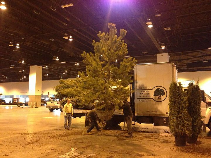 birth of a denver garden and home show garden, flowers, gardening, outdoor living, ponds water features, Unloading the trees for our gardens at Colorado Convention Center
