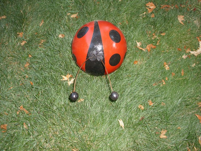 bowling balls to  ladybugs