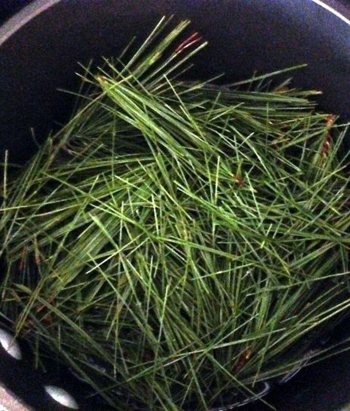 homemade pine needle facial toner, crafts, how to