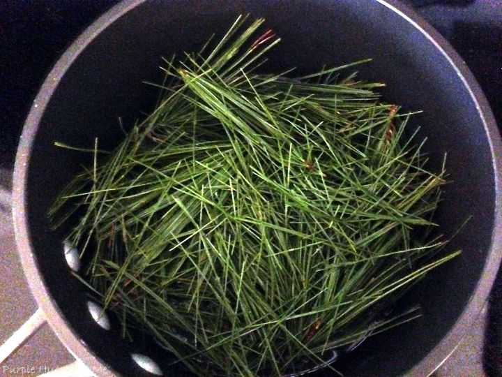 homemade pine needle facial toner, crafts, how to