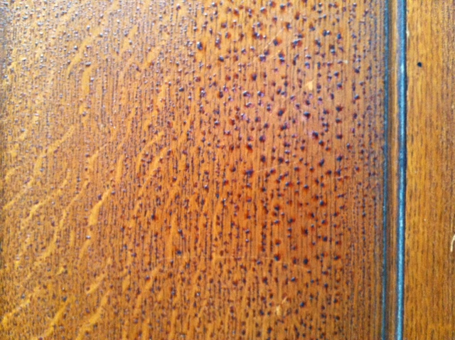 q can i use coconut oil as a furniture polish on antique wood, woodworking projects