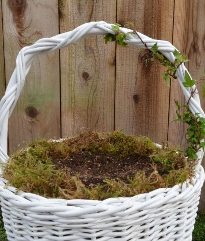 Line the basket with a 1-inch layer of sphagnum moss. Fill the basket with a high-quality potting soil. Then plant a small-leafed ivy, wrapping the ivy around the handle and tying it down with clear fishing line.