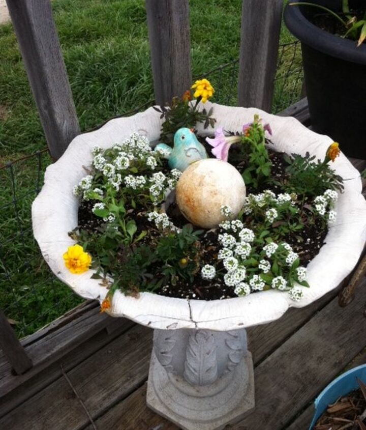 Allysum, Yellow Marigolds, Pink petunias in my old birdbath..I can't wait until it is full!
