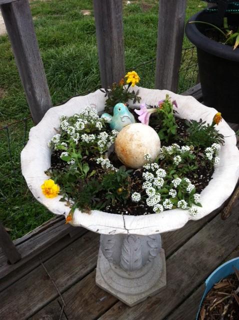 Allysum, Yellow Marigolds, Pink petunias in my old birdbath..I can't wait until it is full!