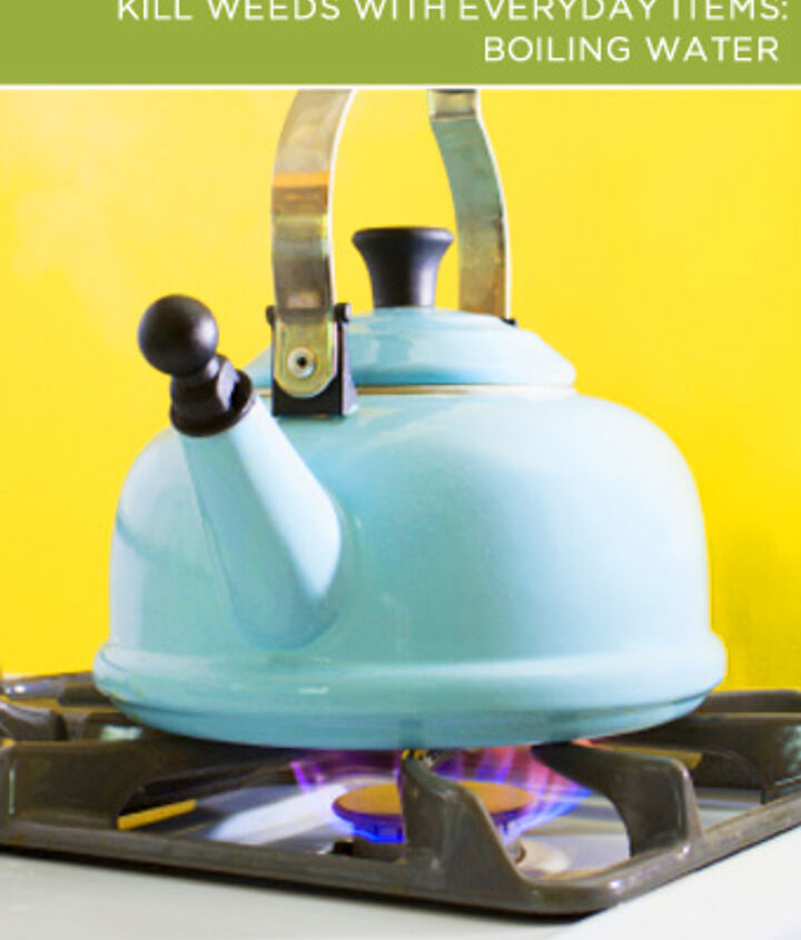 Boiling Water. Use a kettle or microwave to boil at least a cup of water (more if you're targeting a big clump-o-weed) and then quickly but safely head outside – you want the water to still be boiling!