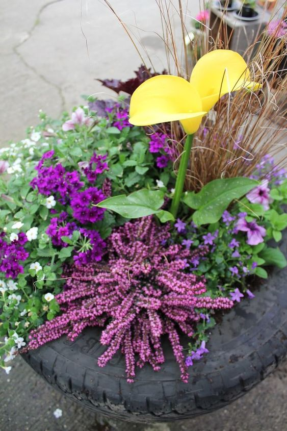 up cycled tire planter, container gardening, flowers, gardening, perennials, repurposing upcycling, A balanced mix of Perennials and Annuals combine to make a unique show stopper design