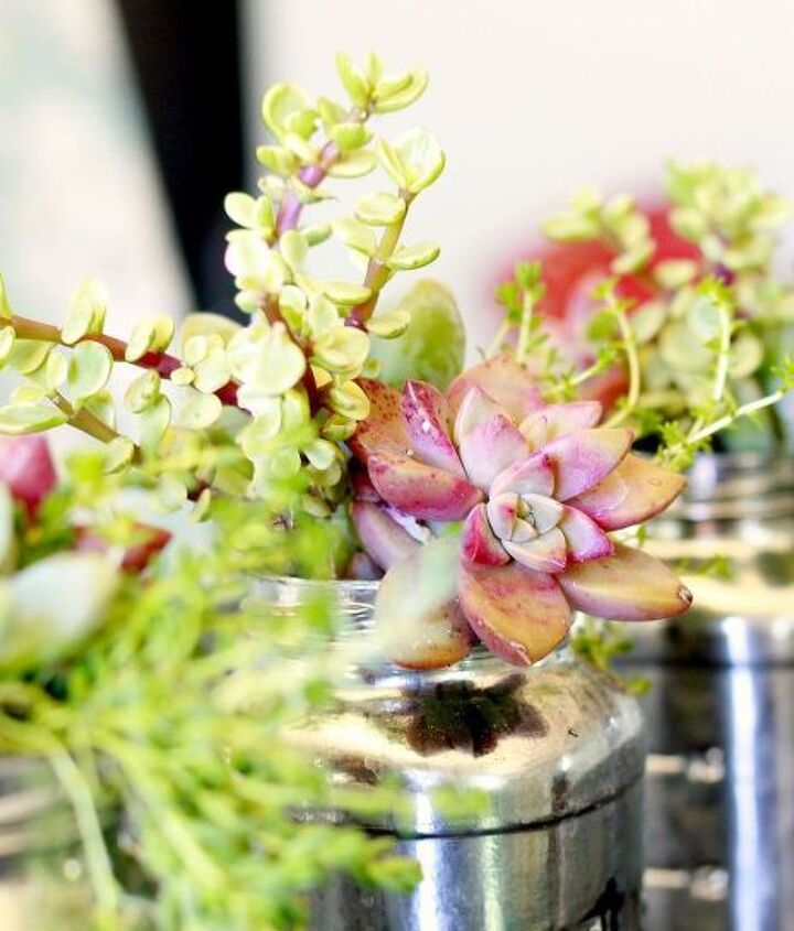 Bright succulents stand out against the mirrored surfaces of the jars.