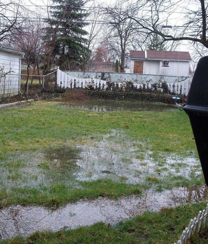 April- This is what my backyard looked like after a rainstorm.