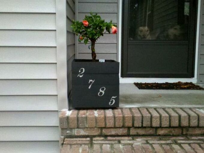 pallet planter, flowers, gardening, hibiscus, pallet, repurposing upcycling, Planter made from leftover pallet boards Painted it with the same colors as on the house Painted the house numbers on it and planted a pretty hibiscus in it