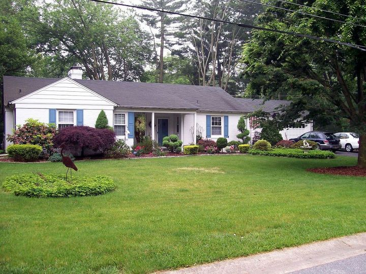 5 years before amp after in our fairfield garden, flowers, gardening, landscape, outdoor living, Before a few shrubs and tons of ivy and pachysandra The side and backyards were so depressing I don t even have true Before pictures