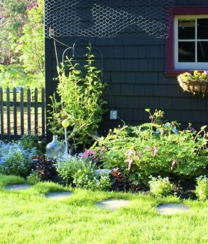 One section of the garden where the clematis, bleeding heart and forget me nots thrive.