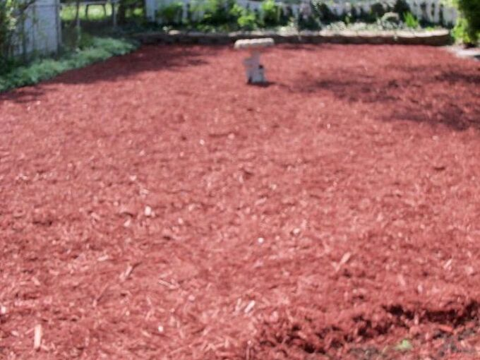 transforming my backyard into a secret garden, flowers, gardening, landscape, outdoor living, perennial, Mulch added today My blank garden slate is ready and I am ready to begin transforming my yard into my secret garden Let the garden games begin SOOO excited