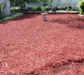 Transforming My Backyard Into A Secret Garden Part 2, Flowers, Gardening,  Landscape,