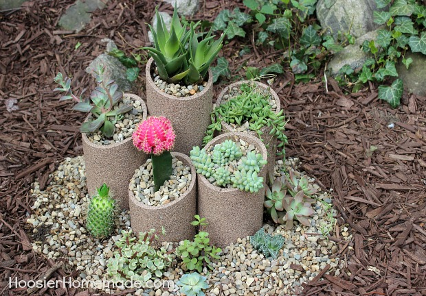 how to build and plant a succulent garden, diy, flowers, gardening, how to, succulents, Succulent Gardens are easy to create and super easy to care for
