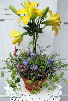 diy blooming topiary, container gardening, crafts, flowers, gardening, Blooming Topiary