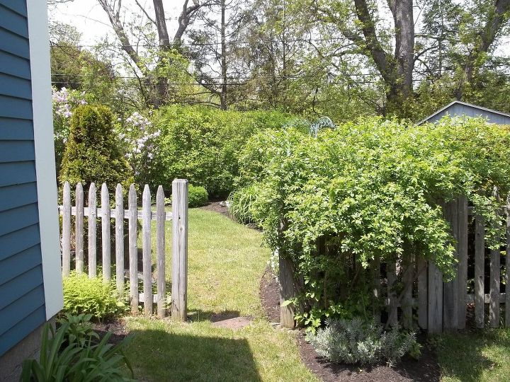 The future location of the trellis - view from side yard to backyard