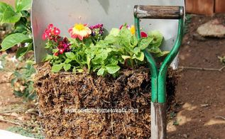 creating a small container flower garden with a broken shovel, container gardening, flowers, gardening