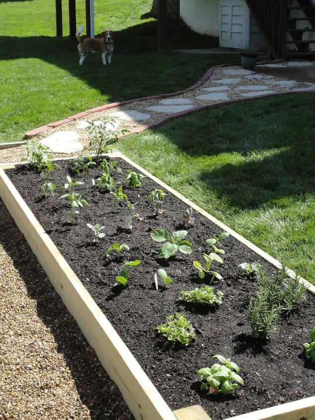 Plant your favorite veggies and herbs!