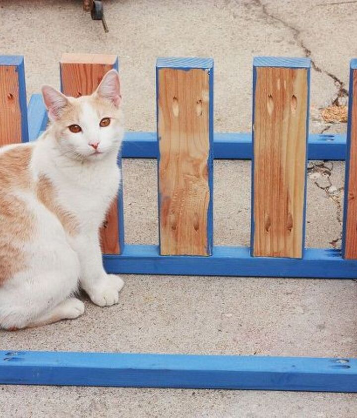 give dad the coolest father s day gift, diy, how to, outdoor living, the kids want to help the cat needs petting It s a zoo around here