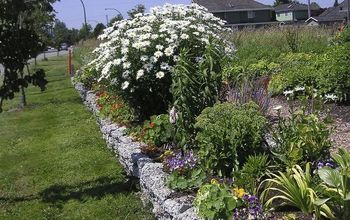 how to build a rock garden, gardening, landscape, succulents, Remember to use plants that are in scale with the garden The Shasta daisy was removed from this bed and moved elsewhere in the garden