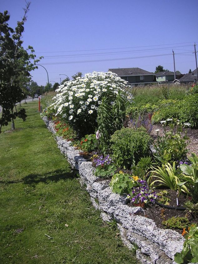 Remember to use plants that are in scale with the garden. The Shasta daisy was removed from this bed and moved elsewhere in the garden.