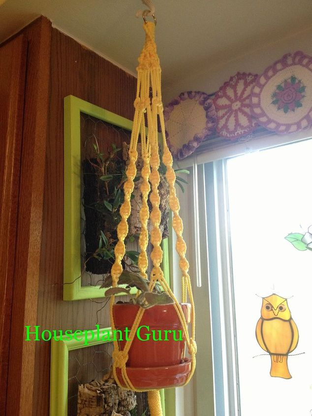 make your houseplants a classy hanger, crafts, gardening