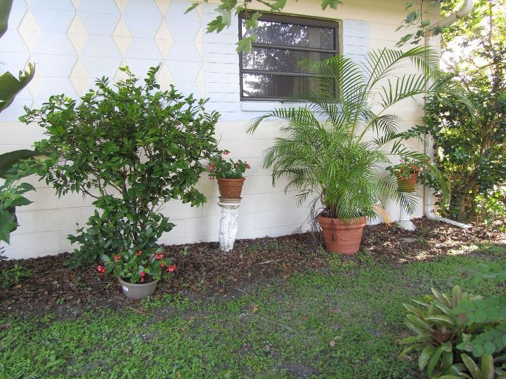 my front yard cheap and easy to do i love gargening, gardening, outdoor living