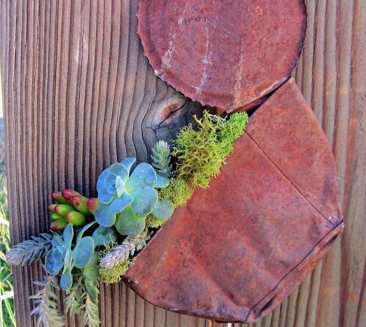 s 15 empty tin can hacks that will make your home look amazing, crafts, home decor, repurposing upcycling, Plant tiny succulents inside one