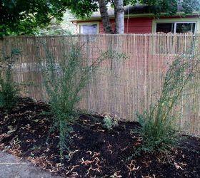 DIY Fences in Gardening Landscaping Hometalk