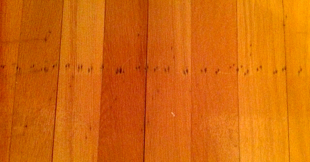 How To Repair Nail Holes In 55 Year Old Oak Flooring