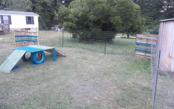 Dog Playground in 5 Hrs :)