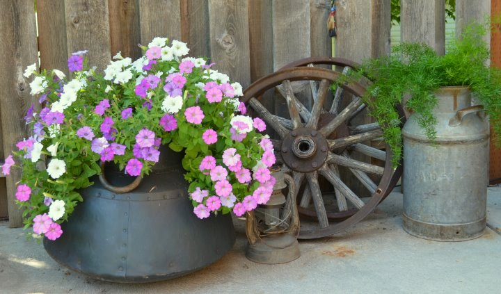 """""""I've been frugal all my life and practiced upcycling long before it was popular. I love to shop thrift stores and flea markets looking for more unusual items I can use in my home and gardens."""""""