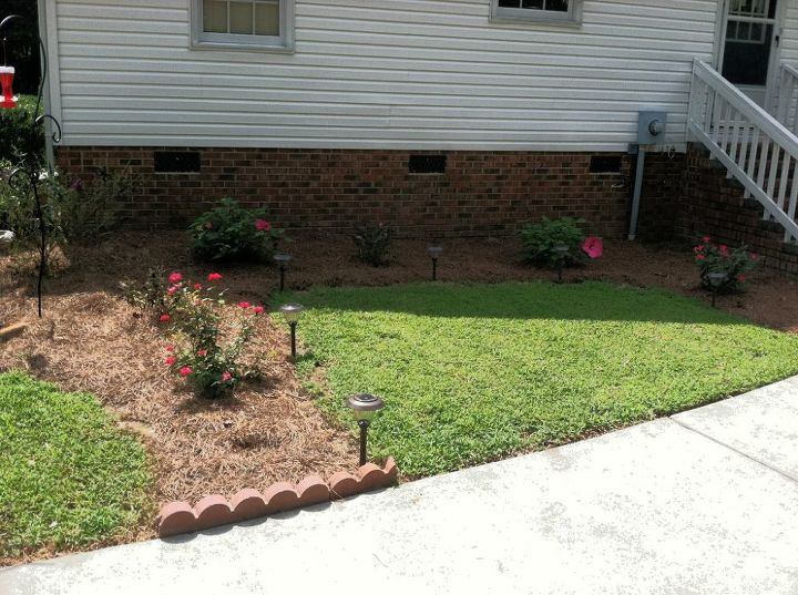 I removed a lot of the grass to outline a sitting area and started planting.
