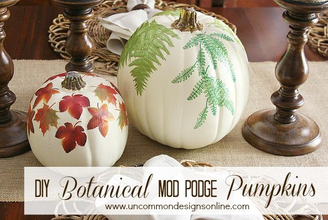love nature make these botanical pumpkins and bring some inside, crafts, decoupage, seasonal holiday decor, DIY Botanical Pumpkins 2 steps