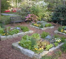 Beautiful Front Yard Vegetable Garden Its Organic Too Hometalk