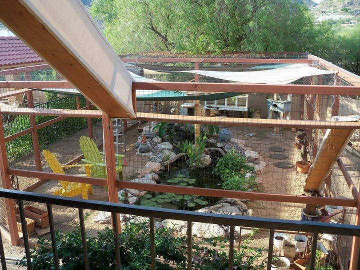 kitty outdoor arena, landscape, outdoor living, ponds water features, Kitty paradise
