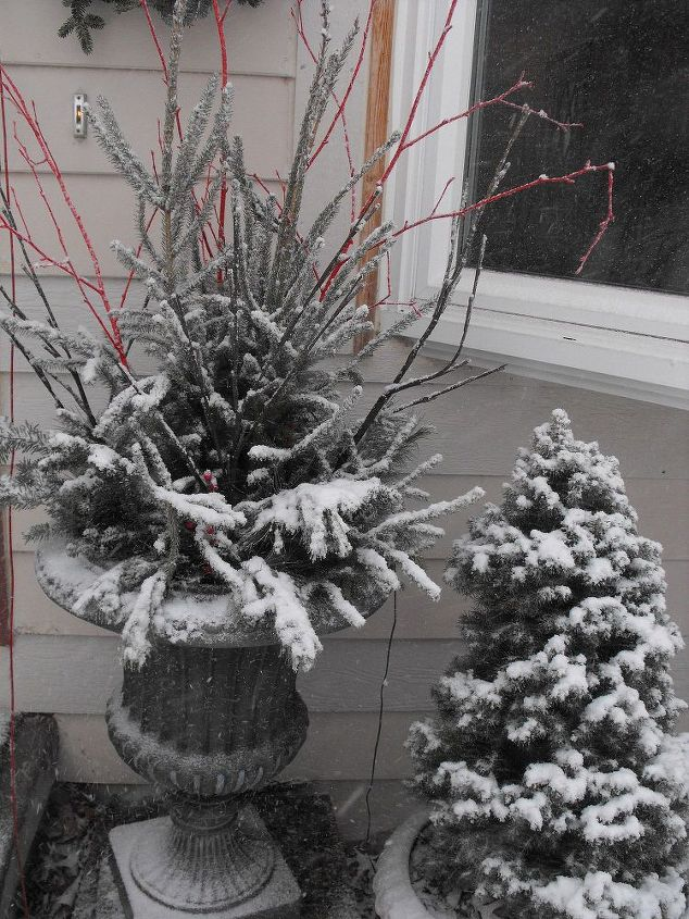 Snow showing off the beautiful branches on the container.