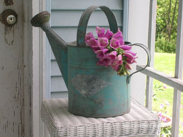 One of my favorite old watering cans with foxglove spilling out of it displayed on the potting shed porch.